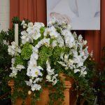 Sargbukett Orchideen, Knorr